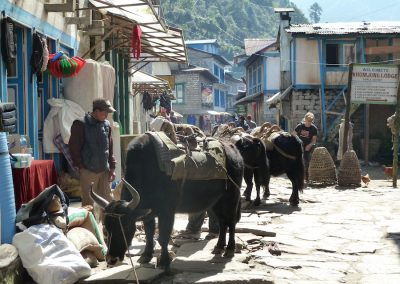 Navigating through the traffic(!), Lukla